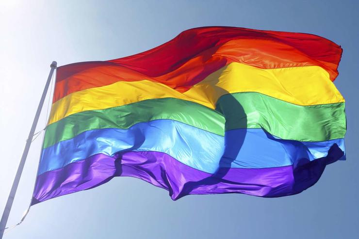 picture flag IDAHOT